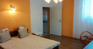 Apartman Nadezda, Appartamenti  Karlovy Vary - big - 26