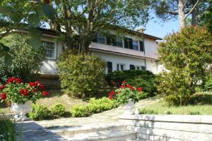 Auberges de jeunesse - Villa La Paleotta