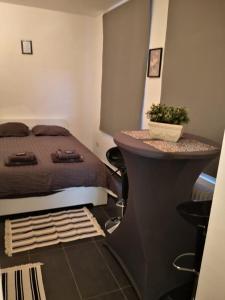 Superbe studio à Ixelles