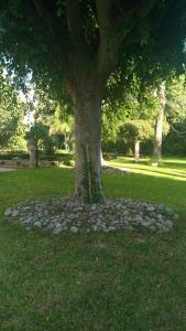 Casa nel parco - AbcAlberghi.com