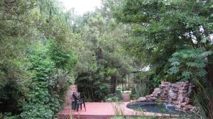 Elands River Lodge, Chaty  Machadodorp - big - 17