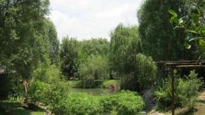 Elands River Lodge, Chaty  Machadodorp - big - 10