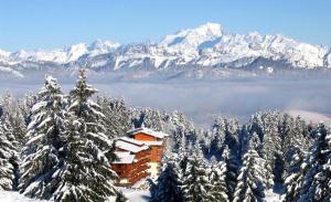 Location gîte, chambres d'hotes Le Mont Blanc Résidence dans le département Savoie 73