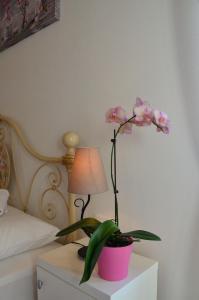 Villa Claudia, Apartments  Fažana - big - 17