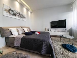 Apartment Apex penthouse