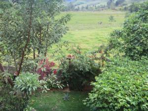 Pousada Rota dos Pássaros, Penzióny  São Bento do Sapucaí - big - 66