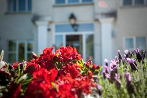Grove House Bed & Breakfast, Bed and Breakfasts  Carlingford - big - 53
