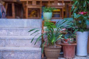 Lijiang Hejiayi Inn, Penziony  Lijiang - big - 29