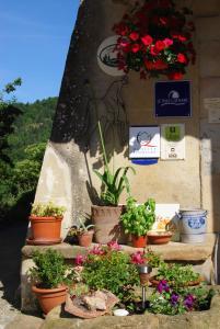 Le Jardin de la Sals (Ecluse au Soleil), Bed and Breakfasts  Sougraigne - big - 43