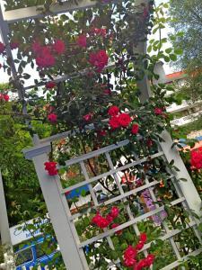 Kalofer Hotel, Hotels  Sunny Beach - big - 34