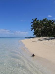 Sands Villas, Vily  Rarotonga - big - 16