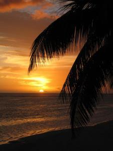 Sands Villas, Vily  Rarotonga - big - 17