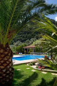 Villa Dimitris Apartments & Bungalows, Apartmány  Lefkada - big - 53