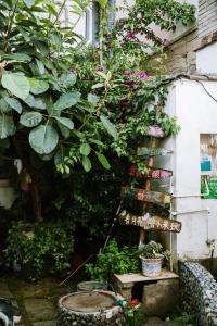 Neverland Youth Hostel, Hostely  Dali - big - 25