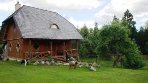 . BirdWatch-Lithuania