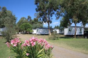 Location gîte, chambres d'hotes Camping Miami plage dans le département Corse du Sud 2a