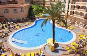 Bahía Tropical, Hotels  Almuí±écar - big - 42