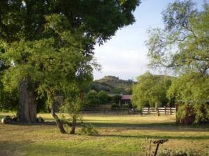 Spirit Tree Inn B&B - Accommodation - Patagonia