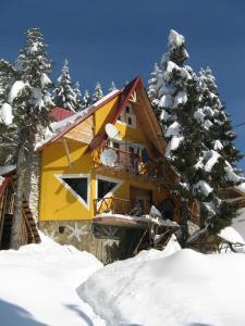Vila Floare de Colt - Hotel - Vartop