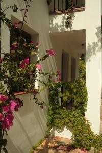 Apartamento Rural Las Palmeras, Country houses  Almonaster la Real - big - 8