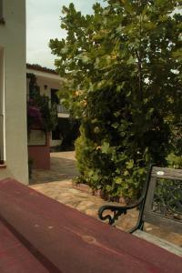 Apartamento Rural Las Palmeras, Country houses  Almonaster la Real - big - 9