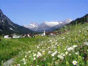 Pension Waldhof - Hotel - Lech