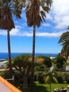 Residencial Casabela, Apartments  Los Llanos de Aridane - big - 24