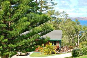 Coast Norfolk Island, Apartmány  Burnt Pine - big - 52