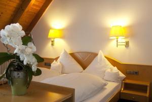 Hotel-Restaurant Hirsch - Hofweier