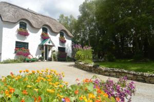 Lissyclearig Thatched Cottage - Kenmare