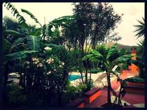 Villa El Minero Bed and Breakfast, Отели типа «постель и завтрак»  Гоннеза - big - 22