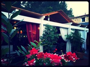 Villa El Minero Bed and Breakfast, Отели типа «постель и завтрак»  Гоннеза - big - 29