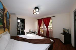 Portile Ocnei, Guest houses  Tîrgu Ocna - big - 49