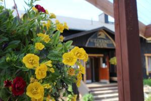 Wilderness Hotel Nellim & Igloos - Nellimö