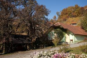 Vineyard Cottage Gole