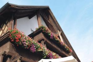 Gasthaus zur Traube - Hotel - Winterrieden
