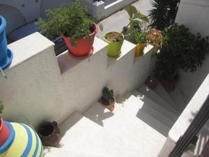 Studios Zafiri, Aparthotels  Naxos Chora - big - 19