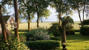 B&B Droom 44, Bed and breakfasts  Buinerveen - big - 9