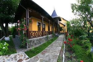 Pensiunea Elena, Vendégházak  Aknavásár - big - 56