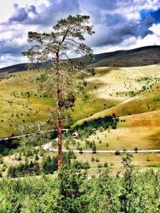Previja Zlatibor Chalet, Alpesi faházak  Zlatibor - big - 1
