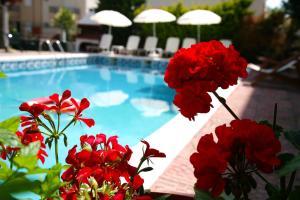 Hostales Baratos - Olympus Hotel Villa Drosos