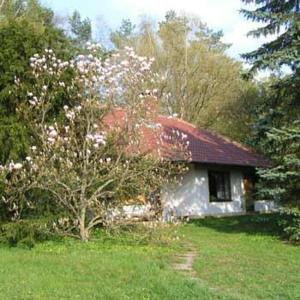 Waldhotel Stein - Creußen