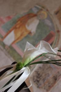 Abbazia San Pietro in Valle (22 of 200)