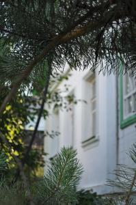 Гостевой дом Каскад, Яхрома
