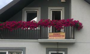 Private accommodation Lidija Rakočević, Penzióny  Kolašin - big - 1