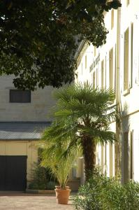 Hôtel de France, Отели  Либурн - big - 11