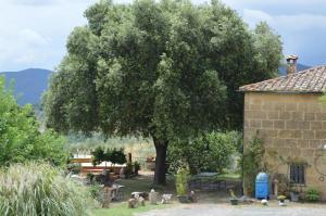 obrázek - Agri-Bio Podere Santa Palmira
