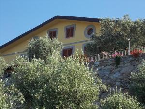 Uliveto Garden, Bed and breakfasts  Bagnara Calabra - big - 32