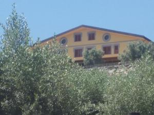 Uliveto Garden, Bed and breakfasts  Bagnara Calabra - big - 55