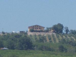 Uliveto Garden, Bed and breakfasts  Bagnara Calabra - big - 63